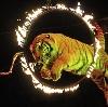 Цирки в Икряном